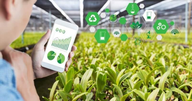La app de monitoreo avisa de la presencia de plagas, enfermedades y recuento de plantas. Le indica al usuario qué productos utilizar y alerta sobre posibles infestaciones en campos