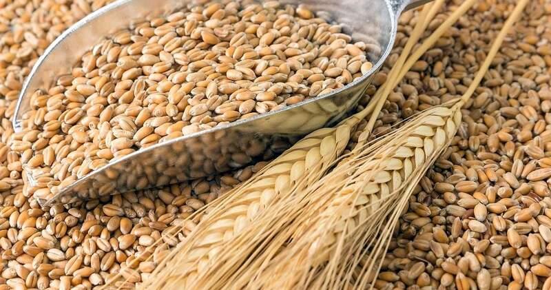 Las Declaraciones Juradas de Ventas al Exterior llegan a 9,05 millones de toneladas de trigo y hasta fin de mes se despacharán 5 millones.