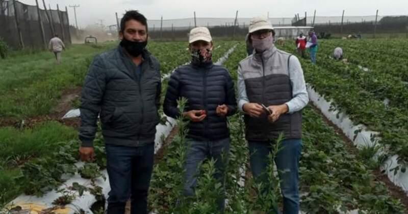 Del operativo participaron los dirigentes nacionales de UATRE Y RENATRE Carolina Llanos, José Liguen y Pedro Peger