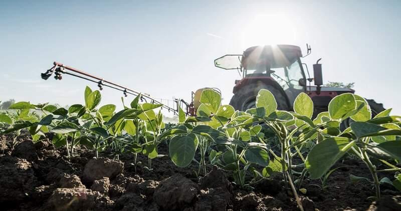 """""""Estamos ante una semana histórica en la Argentina. Estamos viendo los máximos precios del año comercial actual"""", aseguró el consultor agropecuario, Pablo Andreani."""