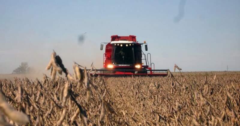 Según cálculos de especialistas, en la soja los productores solo reciben 37% del valor total, mientras que en los cereales se ubica en torno al 50%