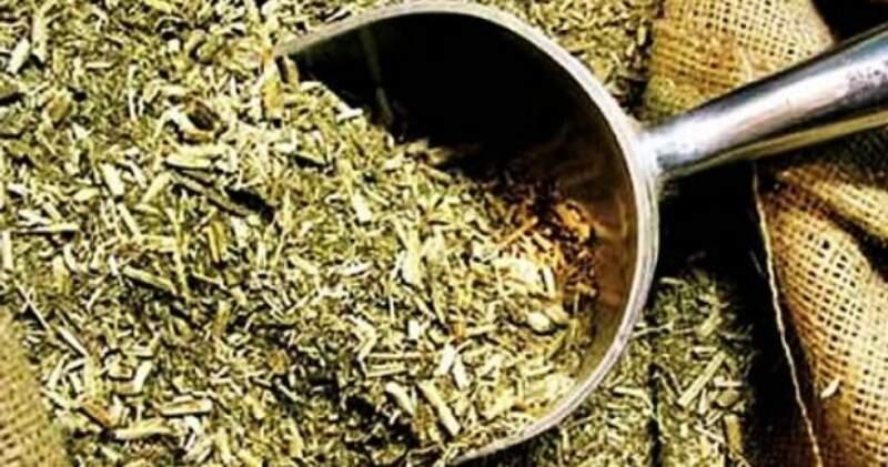 El gobierno fijó su valor en $29.700 la tonelada de hoja verde y en $112,860 el de la yerba mate canchada. La medida rige desde este miércoles hasta el 30 de septiembre.