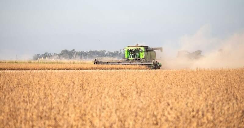 El gigante asiático busca ponerle coto a la suba del valor internacional de los commodities, entre ellos al de los granos, de los cuales es el principal importador a nivel mundial.
