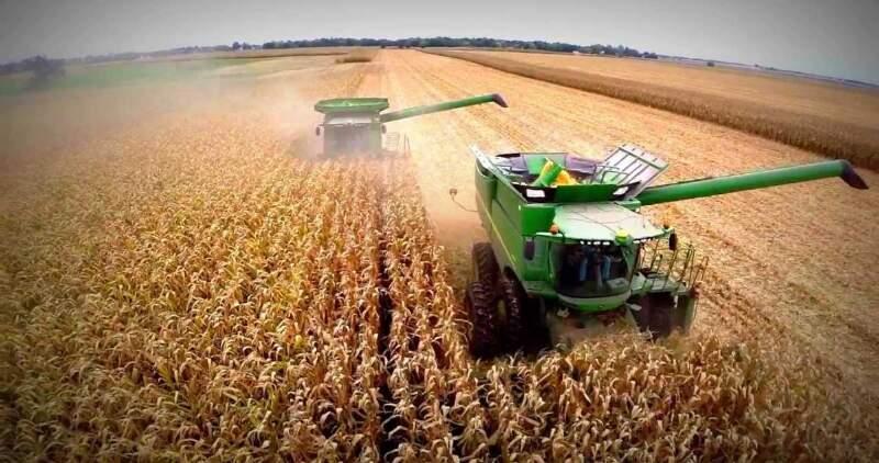 Mercado internacional de granos a la baja