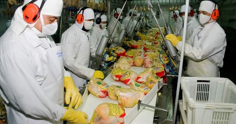 Se destaca el rol estratégico de la producción de cerdo y pollo en el país como cadenas dinamizadoras de las economías regionales