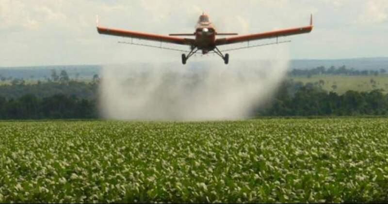 La medida exceptúa la importación de ingredientes activos destinados a la formulación de productos fitosanitarios cuyo destino sea exclusivamente la exportación.