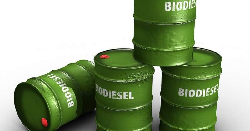 Biodiesel: fallo contra la Argentina en EEUU