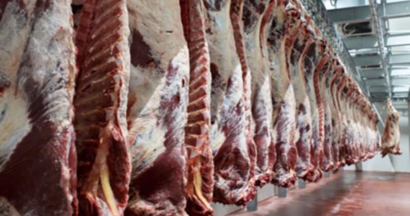En la actualidad Argentina cuenta con un total de 22 establecimientos de carne bovina que exportan su producción al mercado norteamericano